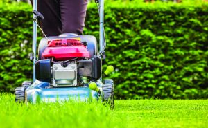 Image for Increasing the height of mowing
