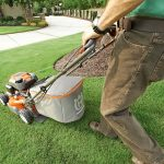 When To Cut Grass after Overseeding
