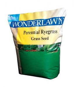 grass seed for poor clay soil
