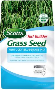 Kentucky Bluegrass Mix