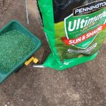 Pennington Grass Seed Vs. Scotts