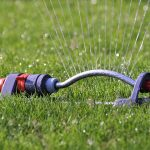 When To Stop Watering New Grass